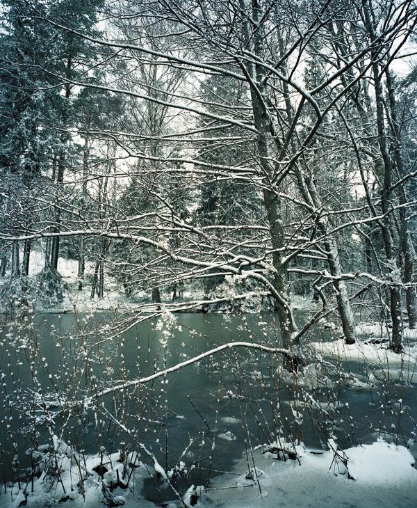 Finland_OTO_Kazashito01